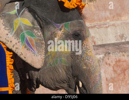 Colourful elephant in Jaipur, Rajasthan, India - Stock Photo