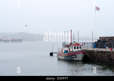 fishing boat in paignton harbour,Fishing boats Paignton Harbour, boat, fishing, sea, ship, trawler, small, ocean, - Stock Photo