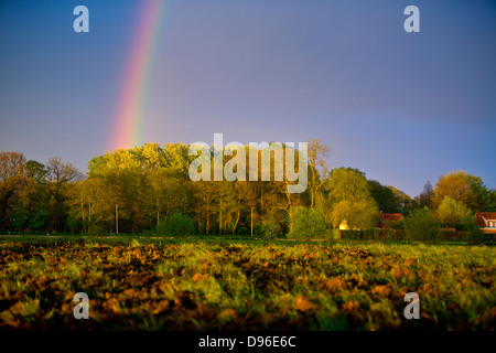 Rainbow showing in the sky above a rural area - Stock Photo