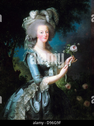 Portrait of Marie-Antoinette with the rose. Oil on canvas, Versailles. Dated 1783 and painted by Vigée-Le Brun. - Stock Photo