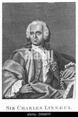 Linnaeus  (Carl von Linne - 1707-1778) Swedish naturalist, holding a sprig of Linnea borealis. Engraving - Stock Photo