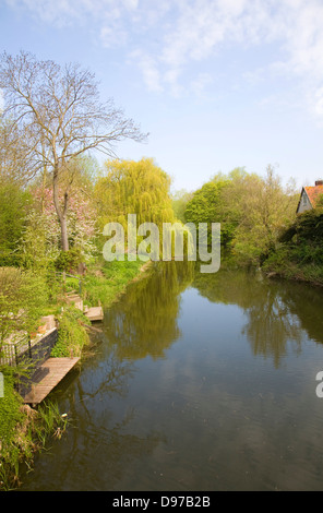 Calm tree lined stretch of the River Stour at Bures, Suffolk Essex border, England - Stock Photo