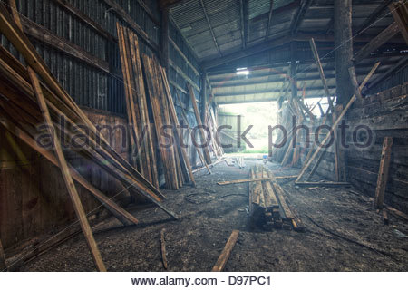 timber yard - Stock Photo