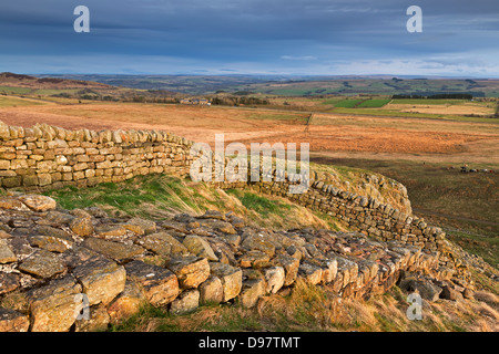 Hadrian's Wall on top of Steel Rigg in Northumberland National Park, Northumberland, England. Spring (April) 2013. - Stock Photo