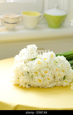Portrait shot of a bunch of white Jonquils/Narcissus by a window on a yellow tablecloth. - Stock Photo