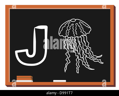 Illustration of alphabet letter J with a cute little Jellyfish isolated on blackboard. J is for Jellyfish - Stock Photo