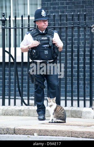 London, UK - 16 June 2013: Cat Larry and a police officer wait outside 10 Downing street for the arrival of Russian - Stock Photo