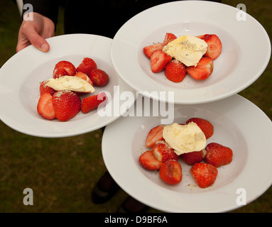 Plates of strawberries and cream - Stock Photo