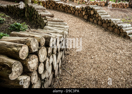 An artistic arrangement of logs in a forest. - Stock Photo