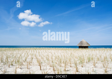 Dune connection on the Baltic beach - Stock Photo