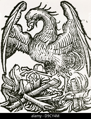 The Phoenix, a fabulous bird which at the end of life makes a nest which it sets on fire, burns itself to ashes, - Stock Photo