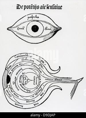 Diagram of the human eye. Woodcut from ''Margarita philosophica'', 1508. - Stock Photo