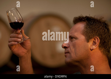 Man checking the color of red wine - Stock Photo