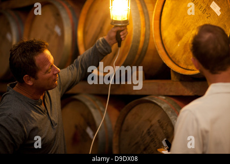 Checking wine aging in barrels - Stock Photo