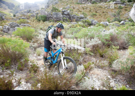 Young man mountain biking through scrubland - Stock Photo