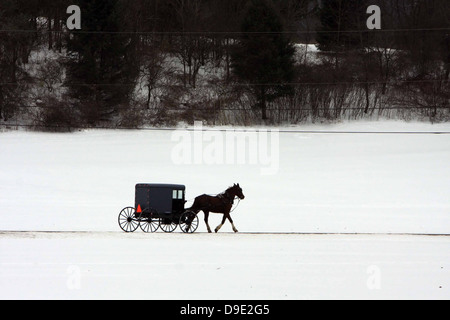 AMISH HORSE BUGGY WINTER SNOW TREES - Stock Photo