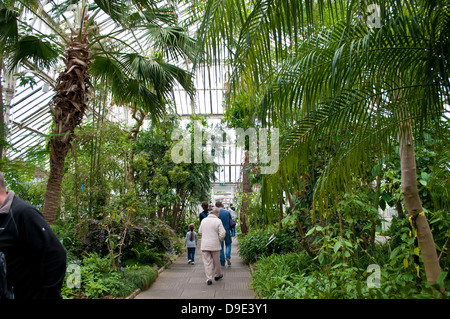Temperate House, Kew Royal Botanic Gardens, London, UK - Stock Photo