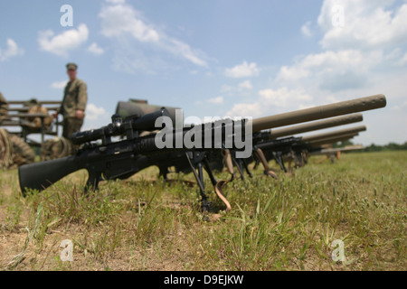 Scout Snipers line up their new MK-11 sniper rifles. - Stock Photo