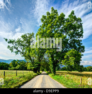 Sparks Lane in Cades Cove near Gatlinburg, Tennessee. - Stock Photo