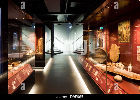 The Mary Rose Museum, Portsmouth, United Kingdom. Architect: Wilkinson Eyre Architects , 2013. Internal view of - Stock Photo