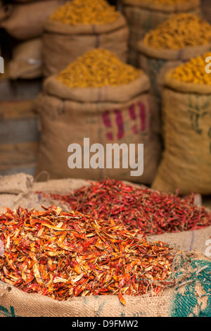 Sacks of chillies in a market, Delhi, India - Stock Photo