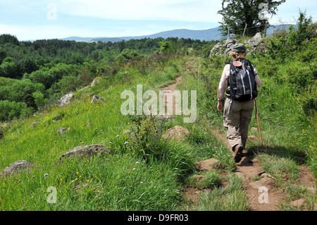 Pilgrim on the Way of St. James, Christian pilgrimage route towards Saint-Jacques-de-Compostelle, Languedoc-Roussillon, - Stock Photo