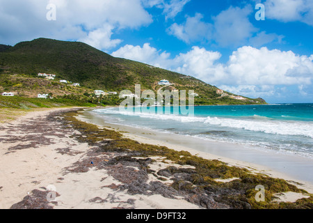 Turtle Beach, St. Kitts, St. Kitts and Nevis, Leeward Islands, West Indies, Caribbean - Stock Photo
