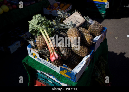 Pineapples and rhubarb for sale in a box at a farmers market. - Stock Photo
