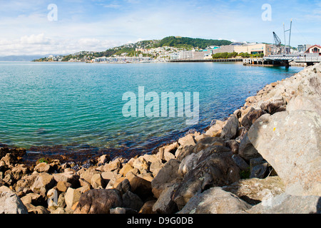 Wellington Harbour, North Island, New Zealand - Stock Photo