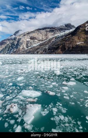 Johns Hopkins Inlet, Fairweather Range, Glacier Bay National Park and Preserve, Southeast Alaska, USA - Stock Photo
