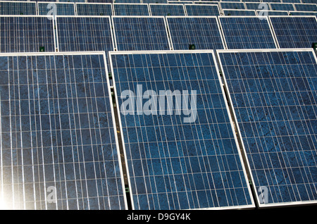 Solar Panels In A Row Collecting Light - Stock Photo