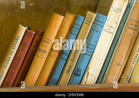 Classroom of Antonio Machado in the old university - books detail, Baeza, Jaen-province, Region of Andalusia, Spain, - Stock Photo