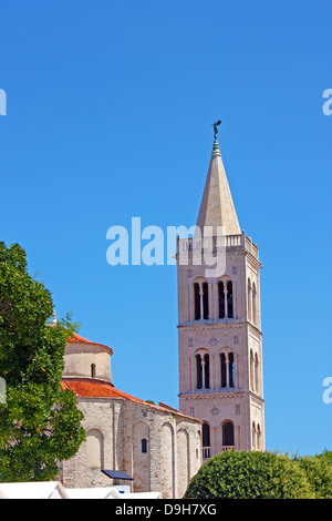 Church of St. Donat and tower of cathedral of St. Anastasia in Zadar, Croatia from 9th century - Stock Photo