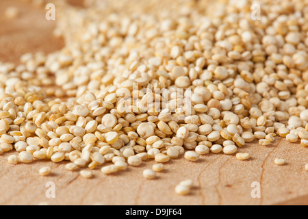 Raw Organic Quinoa Seeds against a background - Stock Photo