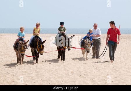donkey riding on beach, great yarmouth, norfolk, england - Stock Photo
