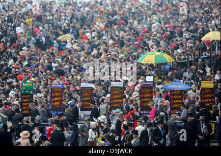 Royal Ascot, Berkshire, UK. 20th June 2013.  Packed lawns as massive crowd wait for the action to begin on Ladies - Stock Photo