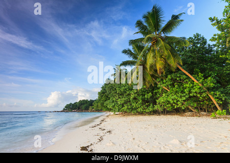 Sunset on Anse la Réunion beach in La Digue island, Seychelles - Stock Photo