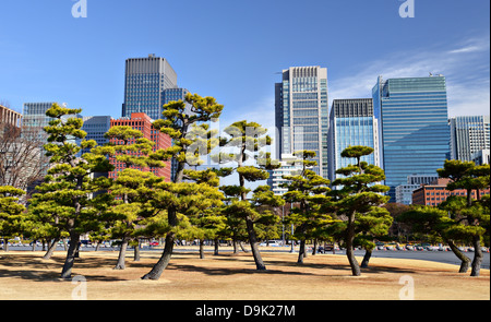 Tokyo, Japan's Marunouchi Business District viewed from the grounds of Tokyo Imperial Palace. - Stock Photo
