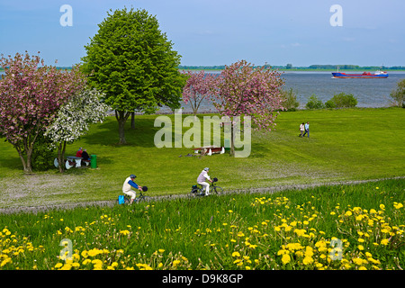 On the Elbe River near Gruenendeich, Altes Land, Stade District, Lower Saxony, Germany