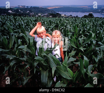 A young brother and sister posing together in a cornfield in summer. overlooking a bay in Cornwall, England, UK. Stock Photo
