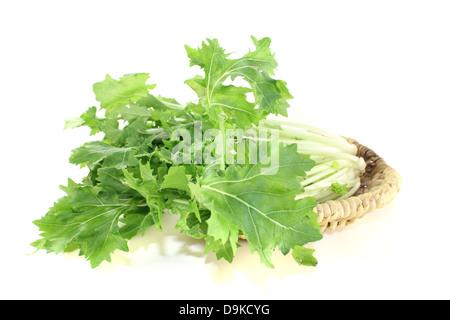 fresh Turnip green leafs on a light background - Stock Photo
