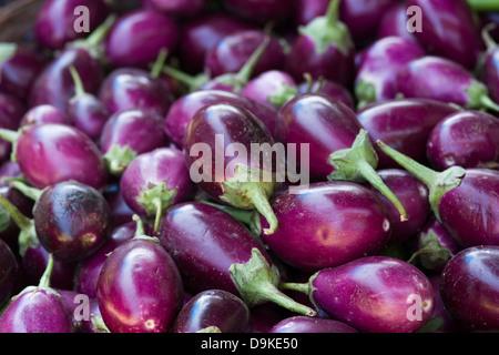 Asia, India, Karnataka, Madikeri, eggplant on the market - Stock Photo