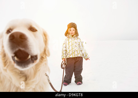 Close up of dog's face with girl in background - Stock Photo