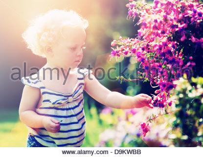 toddler picking flowers - Stock Photo