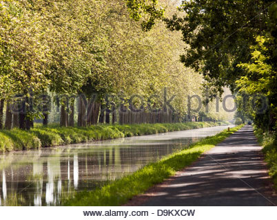 A tree lined canal in the Dordogne region of France - Stock Photo