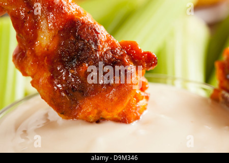 Hot and Spicey Buffalo Chicken Wings with celery - Stock Photo