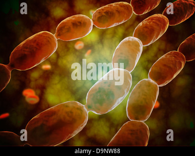 Microscopic view of bacterial pneumonia. - Stock Photo