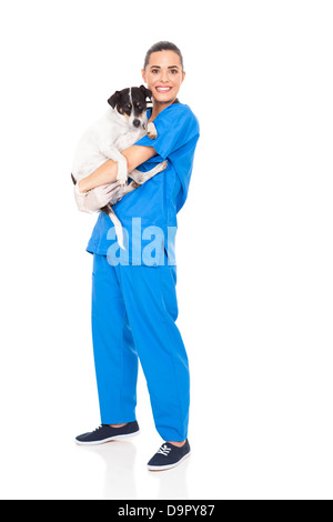 caring veterinarian holding a dog isolated on white background - Stock Photo