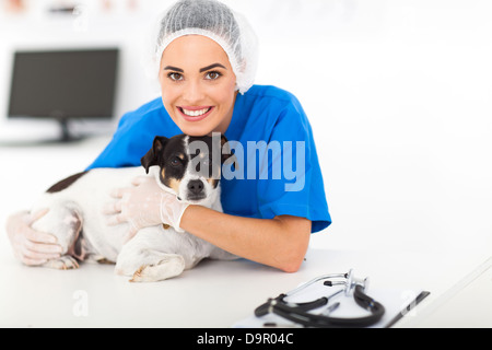 caring veterinarian with sick dog in animal hospital - Stock Photo