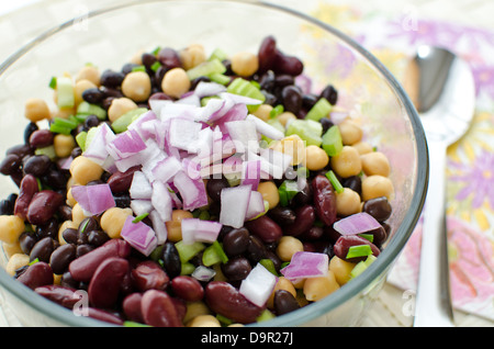 Bowl of bean salad freshly made with chick peas, black beans, and kidney beans. Topped with chopped red onion. - Stock Photo